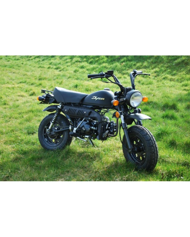 Moto skyteam SKYMINI MONKEY 125cc