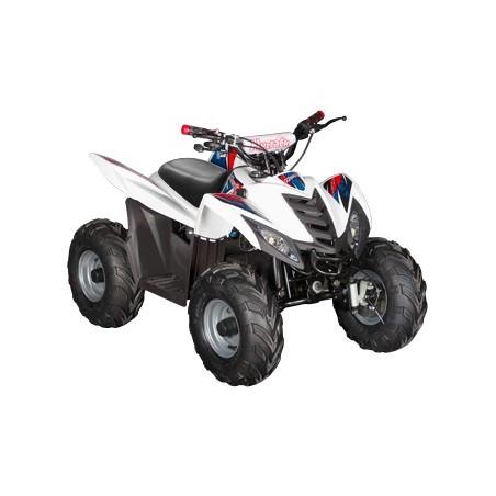 Quad hy hytrack 35 EV