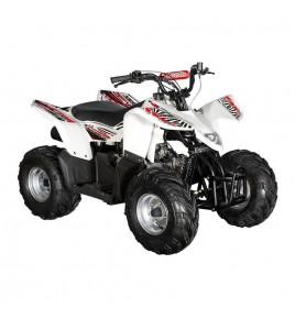 Quad HY 100SX