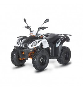 Quad 200cc homologué Kayo bull