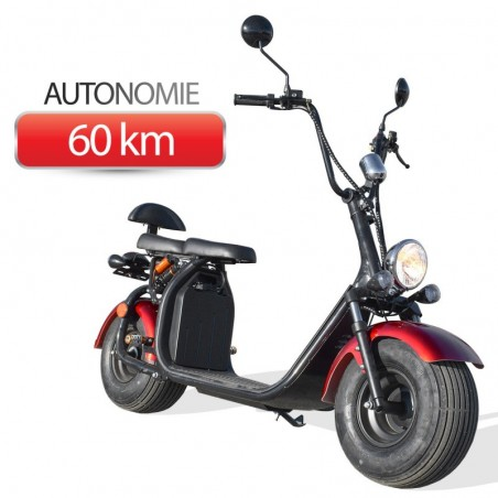 Scooter Trottinette Electrique Homologuée 1500W CITYCOCO