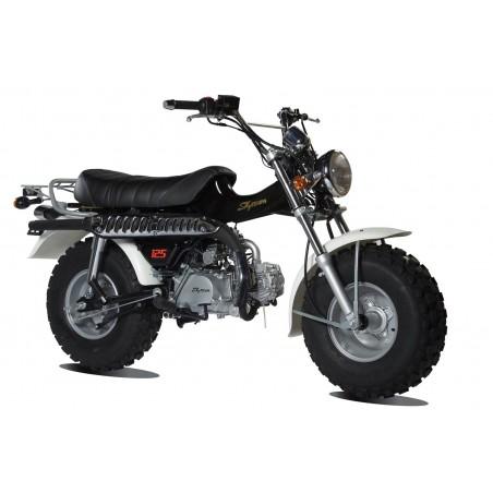 T-REX 125cc