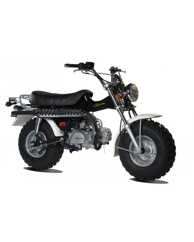 La moto Skyteam T-REX 50cc