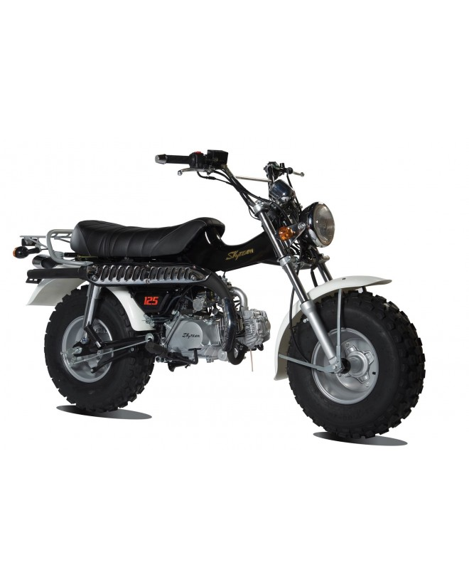 moto Skyteam T-REX 50cc