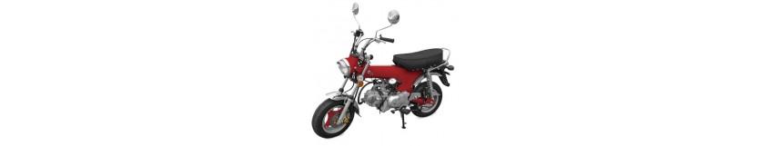 Moto zhenhua